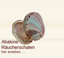 abalone wei er salbei salvia apiana. Black Bedroom Furniture Sets. Home Design Ideas